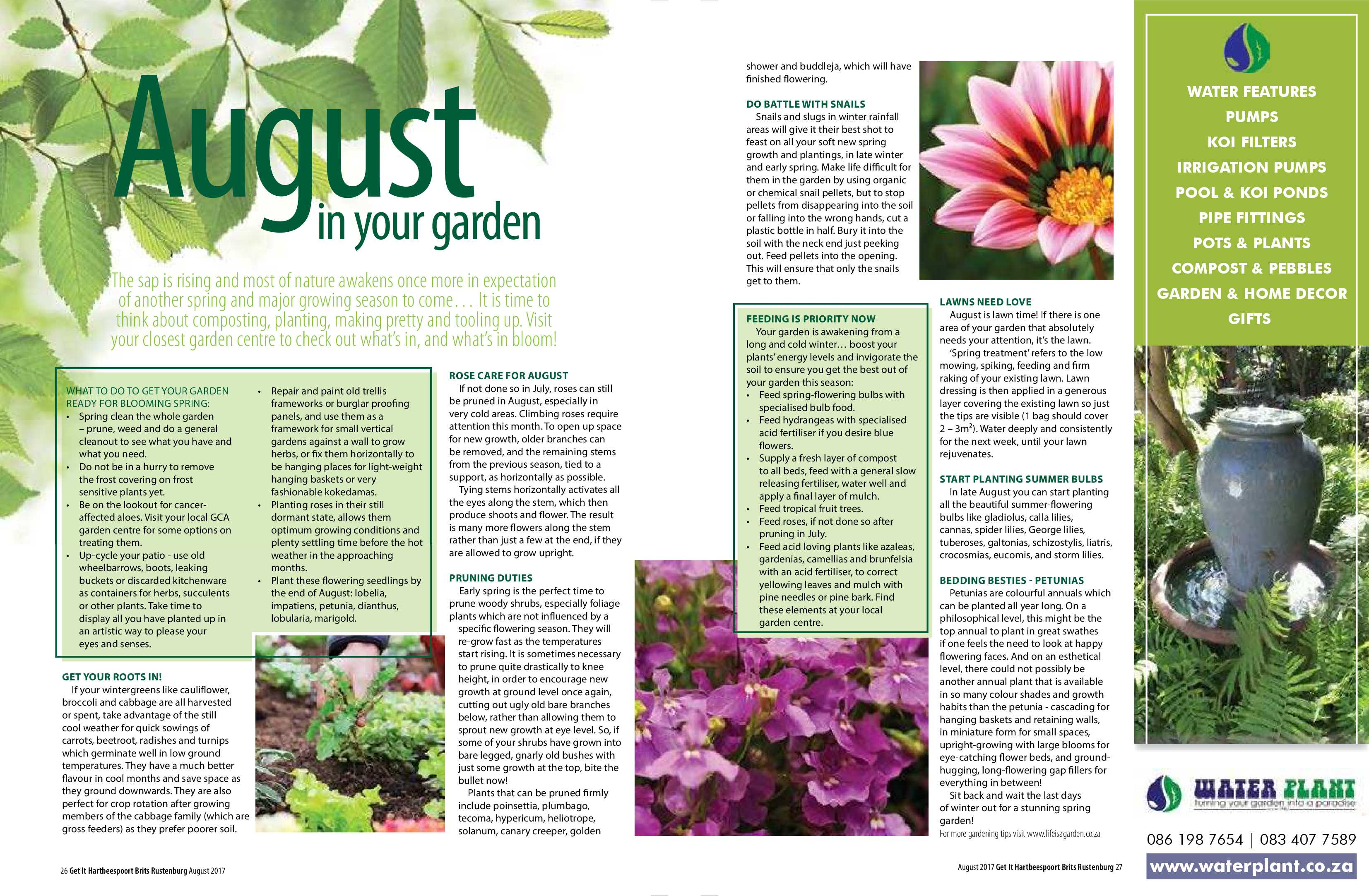 get-august-2017-epapers-page-16